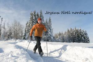 joyeux noel nordique